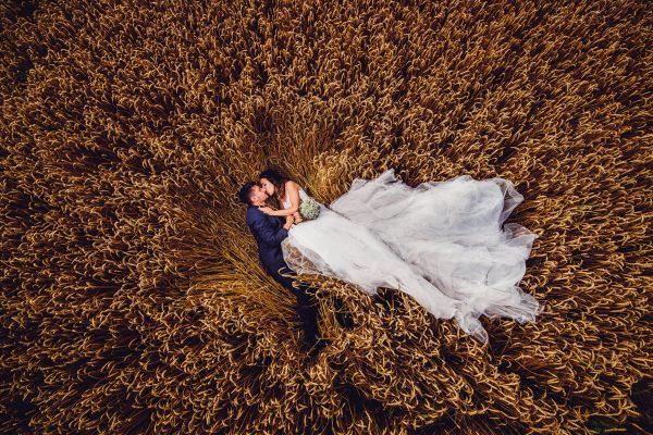 matrimonio establo chieri