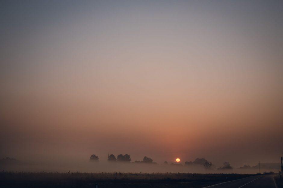 fattoria roico montiglio monferrato