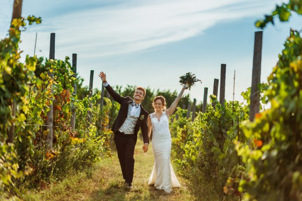 tenuta armonia clavesana matrimonio